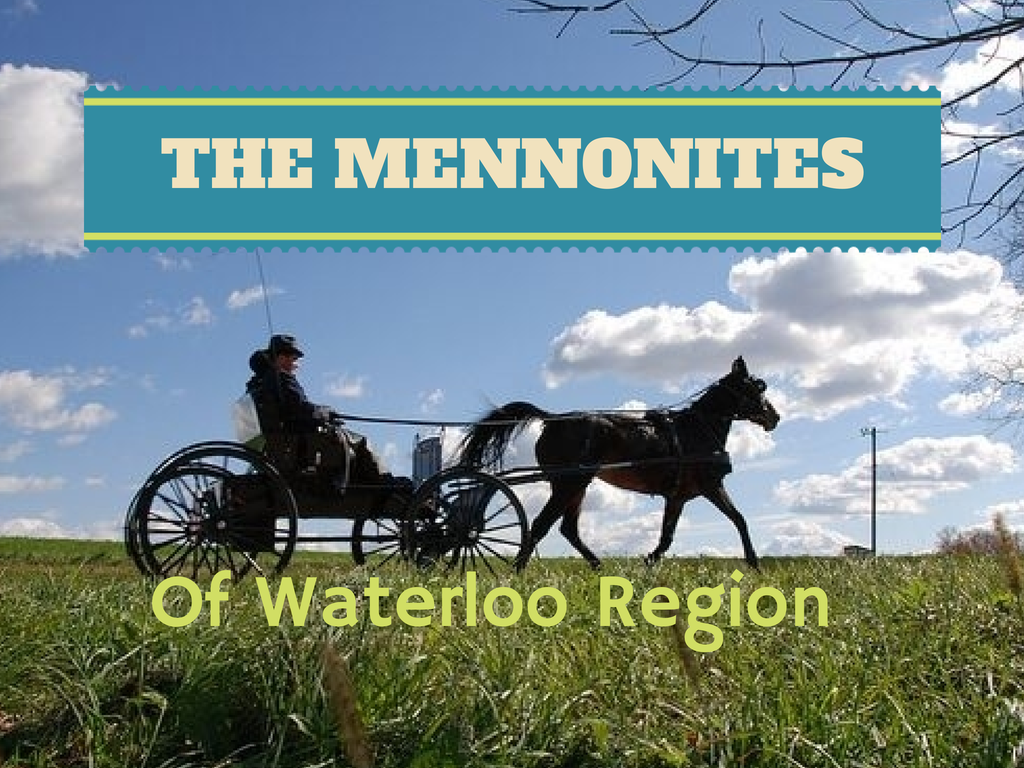 The Mennonites Around Neighbourhoods In Waterloo Ontario
