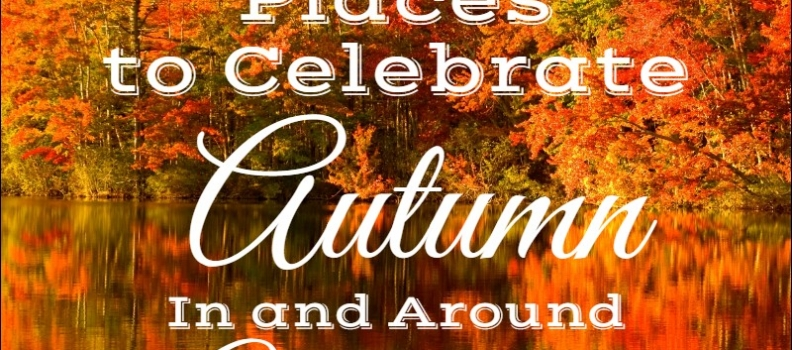 The 15 BEST WAYS  to Celebrate Autumn when living in Waterloo Ontario