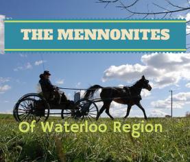 The Mennonites Around Neighbourhoods In Waterloo Ontario