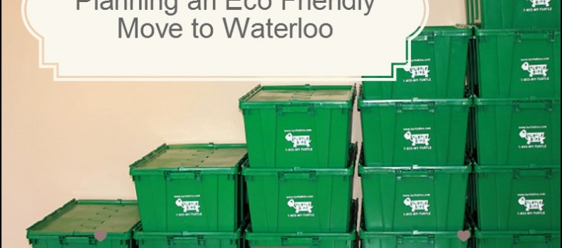 Eco-Friendly Ideas If You're Moving To Waterloo Ontario.