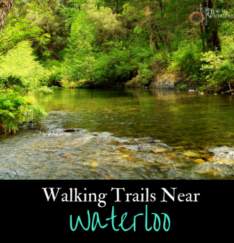 Walking Trails Near Waterloo Ontario